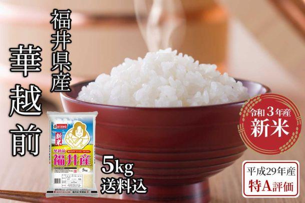 【令和3年新米】福井県産 華越前 5kg(送料込)
