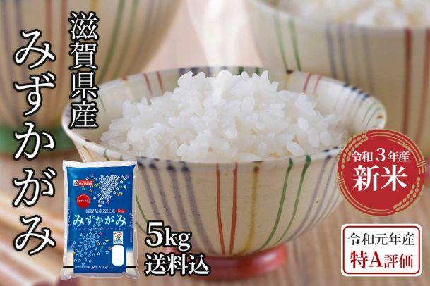 【令和3年新米】滋賀県産 みずかがみ 5kg(送料込)